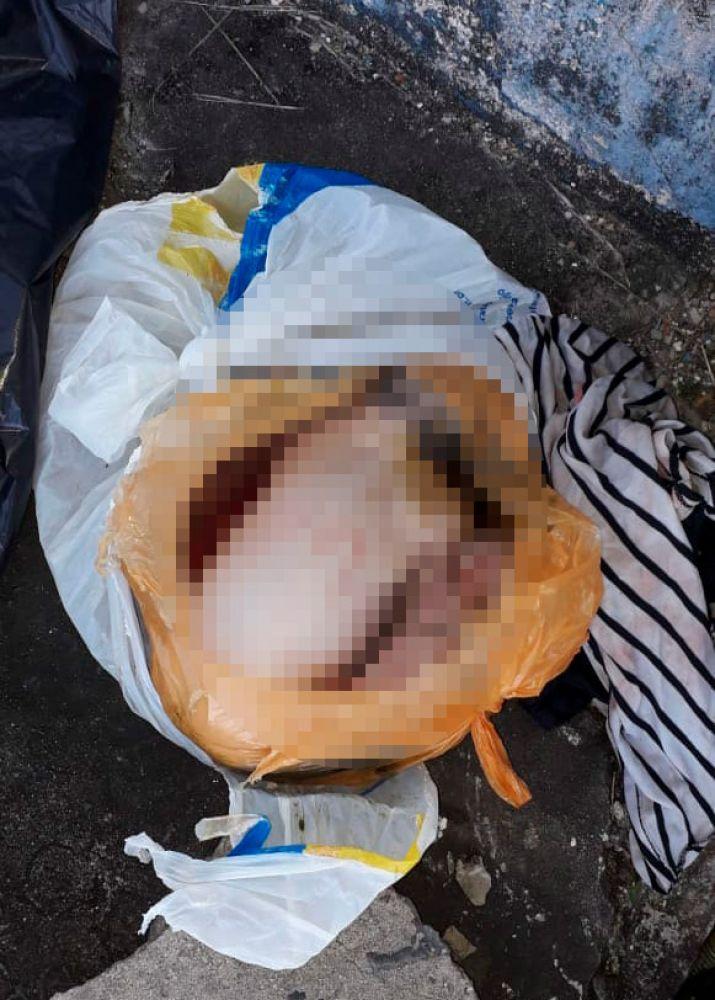Mulher é presa em Dias d'Ávila após dar à luz e jogar corpo de recém-nascido em bueiro 2