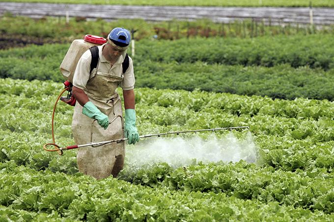 Nova pesquisa acirra polêmica sobre uso de agrotóxicos
